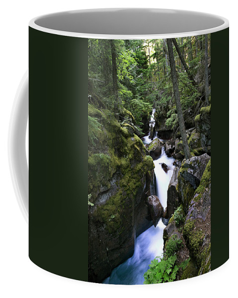 Glacier National Park Coffee Mug featuring the photograph Avalanche Gorge Glacier National Park by Rich Franco
