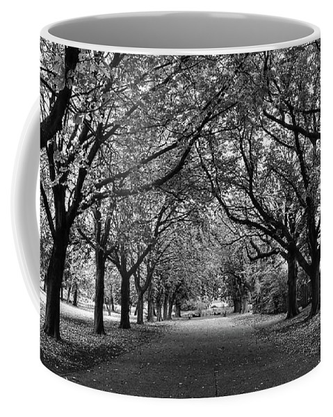 Avenue Coffee Mug featuring the photograph Avenue Of Trees Monochrome by Jeff Townsend