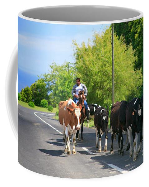 Agriculture Coffee Mug featuring the photograph Azorean Farmer by Gaspar Avila