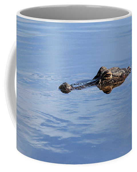 Florida Coffee Mug featuring the photograph Babcock Wilderness Ranch - Alligator Lake - Waiting For Prey by Ronald Reid