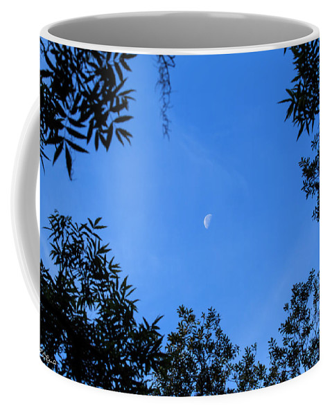 Florida Coffee Mug featuring the photograph Babcock Wilderness Ranch - Daytime Moon Over Babcock by Ronald Reid