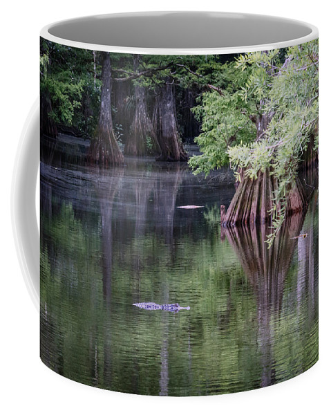 Florida Coffee Mug featuring the photograph Babcock Wilderness Ranch - Peaceful Alligator Lake by Ronald Reid