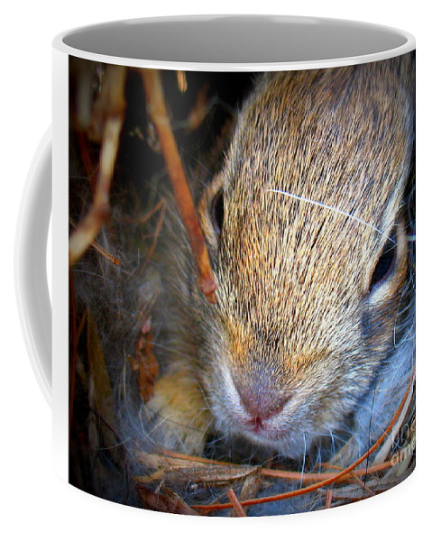 Baby Bunny Coffee Mug featuring the photograph Baby Bunny by Patti Whitten