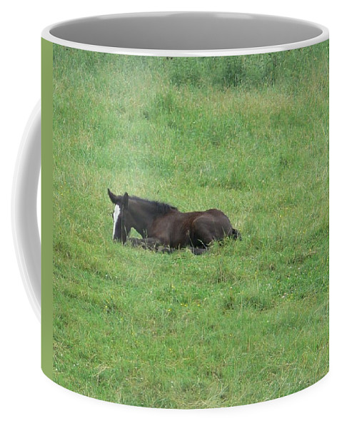 Nancie's Photography Coffee Mug featuring the photograph Baby Horse by Nancie DeMellia