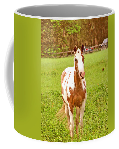 Horse Coffee Mug featuring the photograph Baby With Butterfly by Adele Moscaritolo