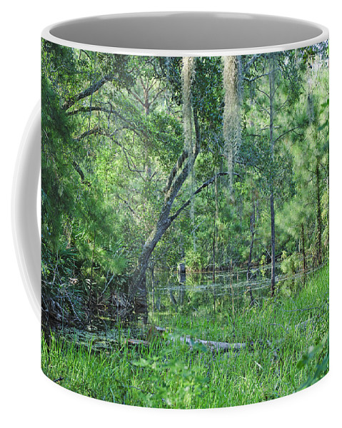 Swamp Coffee Mug featuring the photograph Back In Time In Florida by Kenneth Albin