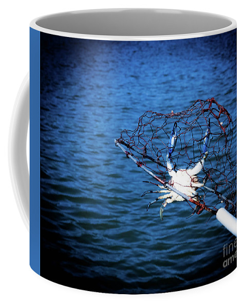Blue Coffee Mug featuring the photograph Back To The Bay Blue Crab by Jennifer Craft