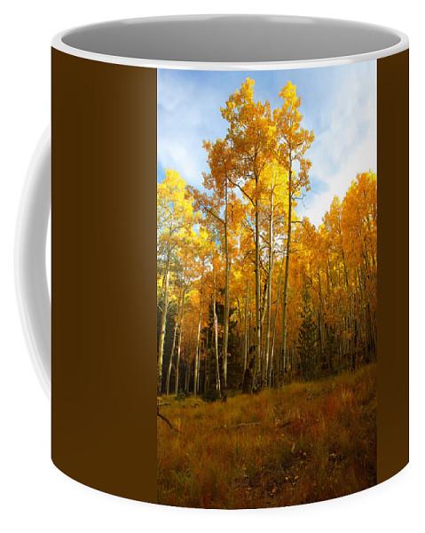 Arizona Coffee Mug featuring the photograph Backlight by Jason Keefe