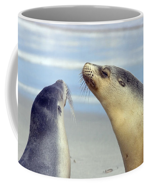 Sea Lion Coffee Mug featuring the photograph Backtalk by Mike Dawson