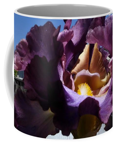 Landscape Coffee Mug featuring the photograph Backyard 6 by Richard Thomas