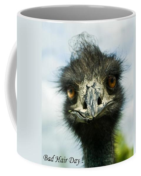 Bad Coffee Mug featuring the photograph Bad Hair Day by Douglas Barnett