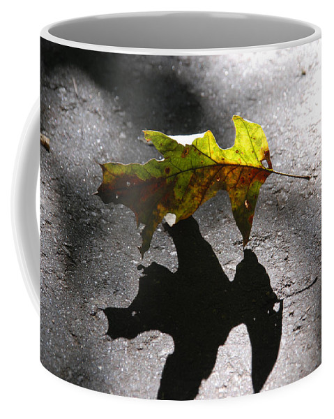 Photography Coffee Mug featuring the photograph Balance by Susanne Van Hulst