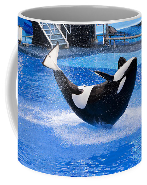 Whale Coffee Mug featuring the photograph Balancing Act by Amy Jackson