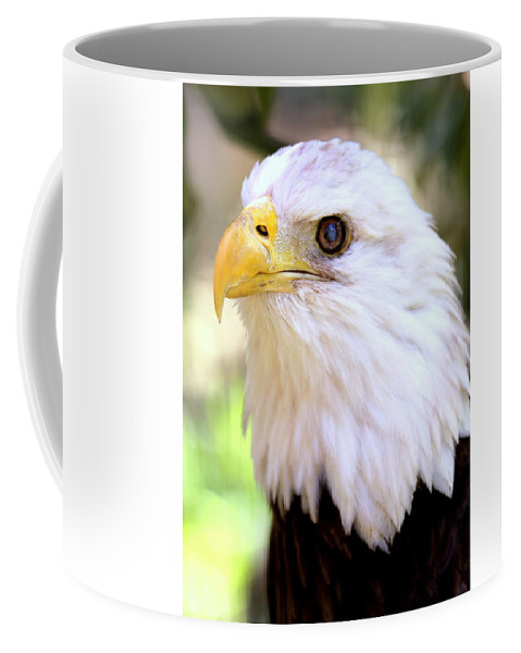 Bald Eagle Coffee Mug featuring the photograph Bald Eagle 1 by Imagery-at- Work