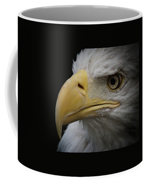 Animal Coffee Mug featuring the photograph Bald Eagle 2 by Ernie Echols