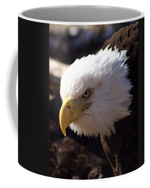 Birds Coffee Mug featuring the photograph Bald Eagle 2 by Marty Koch
