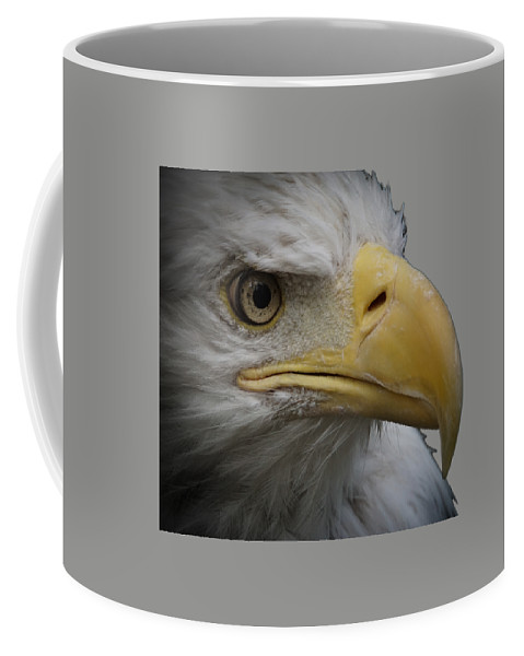 Animal Coffee Mug featuring the photograph Bald Eagle 3 by Ernie Echols