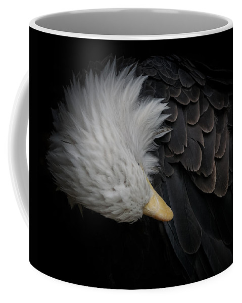 Animal Coffee Mug featuring the photograph Bald Eagle Cleaning by Ernie Echols
