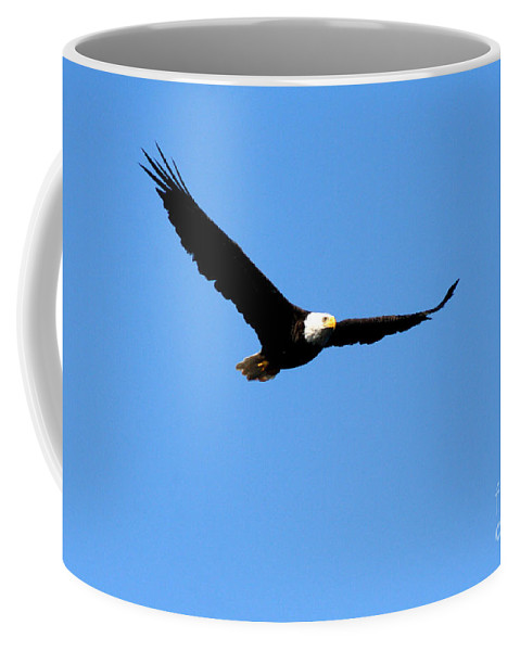 Eagle Coffee Mug featuring the photograph Bald Eagle II by Thomas Marchessault