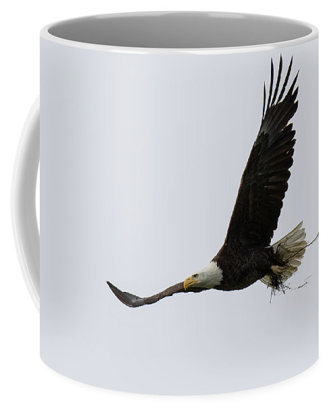 Eagle Coffee Mug featuring the photograph Bald Eagle Returns Home With Nesting Material by Tony Hake