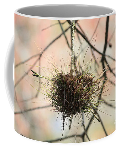 Ball Moss Coffee Mug featuring the photograph Ball Moss by Carol Groenen