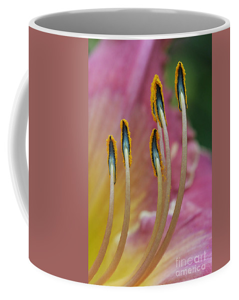 Daylily Coffee Mug featuring the photograph Ballerina Slippers by Judy Whitton