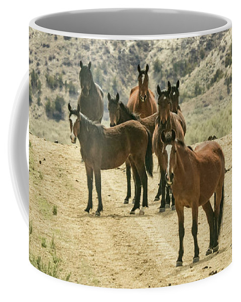 April Coffee Mug featuring the photograph Barcus Creek Band by Debbie Rudd