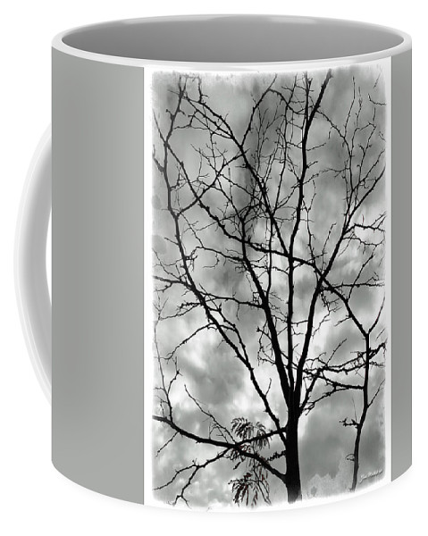 Tree Coffee Mug featuring the photograph Bare Til Spring by Joan Minchak