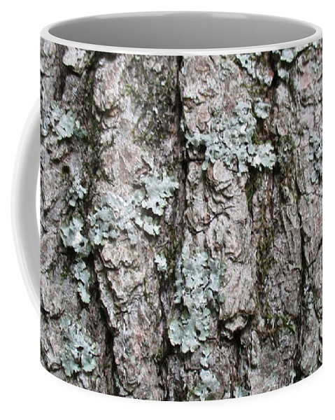 Bark Coffee Mug featuring the photograph Bark by Anthony Schafer