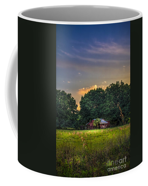 Barns Coffee Mug featuring the photograph Barn And Palmetto by Marvin Spates