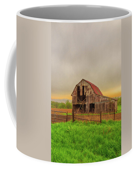 Barn Coffee Mug featuring the photograph Barn In The Cloudy Sky by Terri Morris