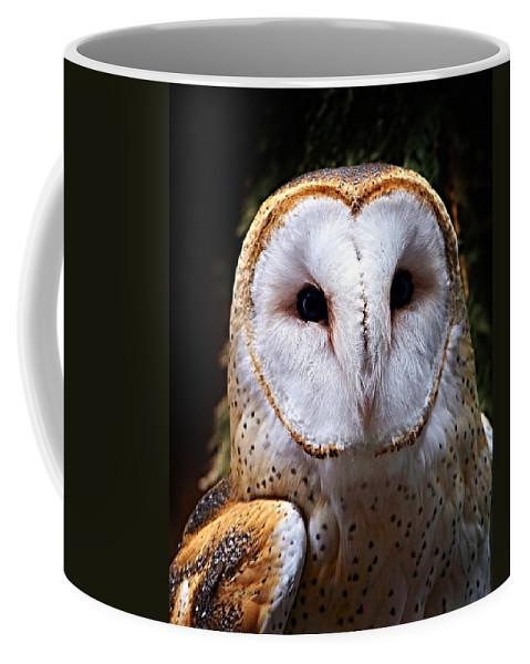Barn Owl Coffee Mug featuring the photograph Barn Owl by Anthony Jones