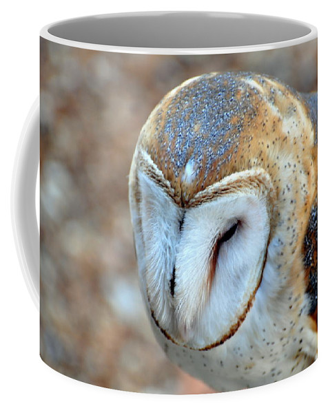 Owl Coffee Mug featuring the photograph Barn Owle 1 by Marty Koch