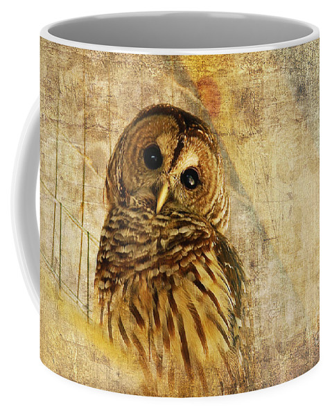 Owl Coffee Mug featuring the photograph Barred Owl by Lois Bryan