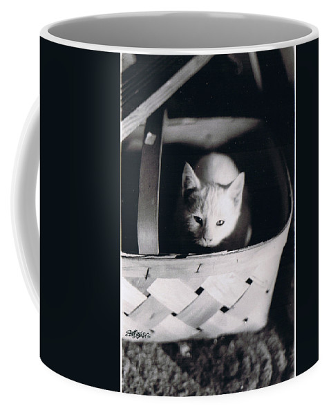 Cat Coffee Mug featuring the photograph Basket Full Of Charlemagne by Seth Weaver