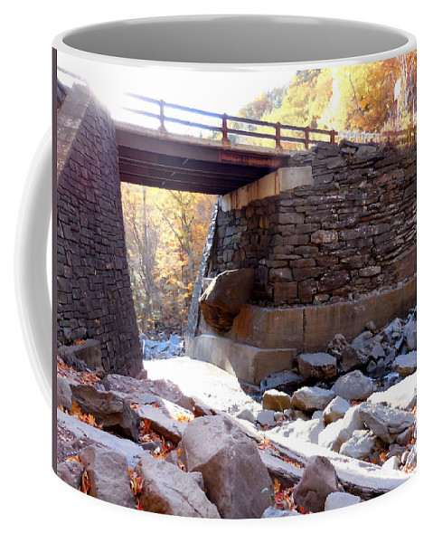 Bastion Falls Bridge Coffee Mug featuring the painting Bastion Falls Bridge 4 by Jeelan Clark