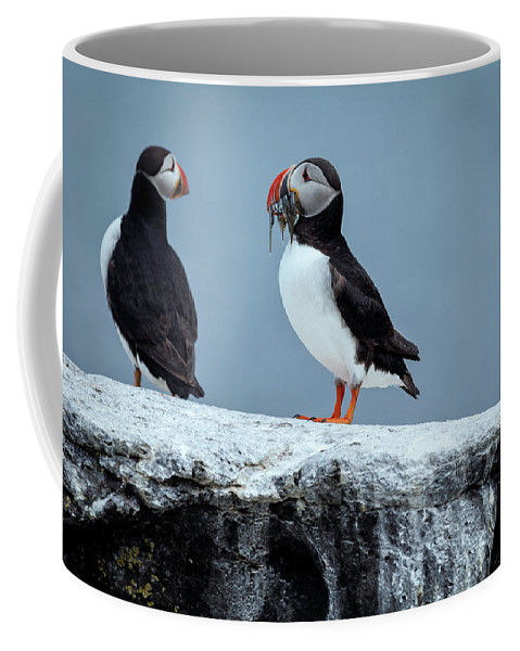 Pufin Coffee Mug featuring the photograph Be Mine... by Valeriy Shvetsov