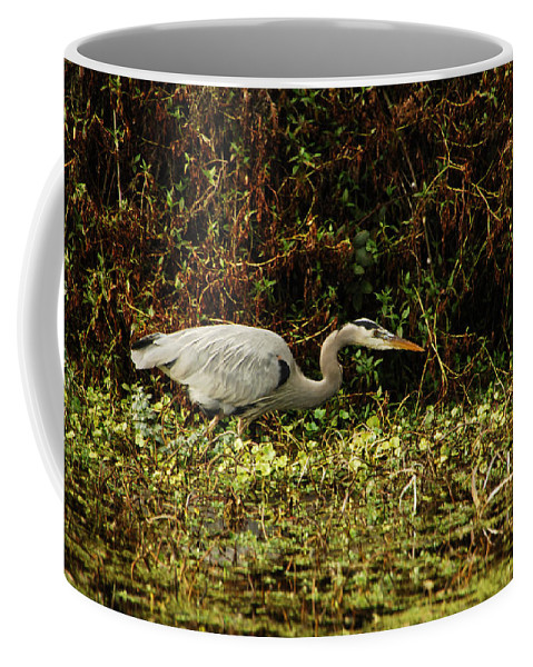 Heron Coffee Mug featuring the photograph Be Wery Wery Quiet by Donna Blackhall