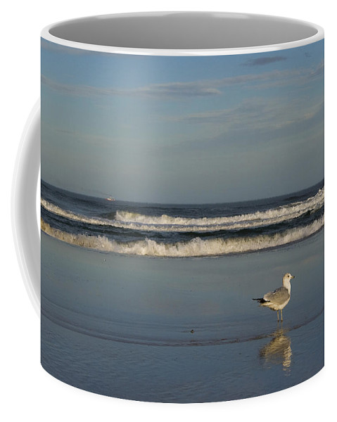 Sea Ocean Gull Bird Beach Reflection Water Wave Sky Coffee Mug featuring the photograph Beach Patrol by Andrei Shliakhau