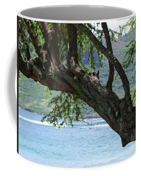 Blue Coffee Mug featuring the photograph Beach Tree by Mary Deal