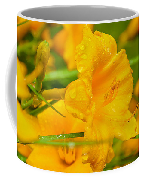 Yellow Coffee Mug featuring the photograph Beading by Greg Fortier