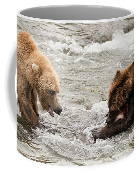 Alaska Coffee Mug featuring the photograph Bear Watches Another Eat Salmon In River by Ndp