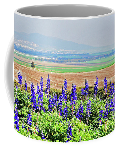 Bluebonnets Coffee Mug featuring the photograph Beautiful Bluebonnets by Lydia Holly