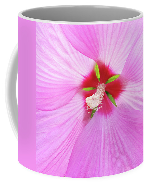 Flower Coffee Mug featuring the photograph Beautiful delicate pink hibiscus flower by GoodMood Art