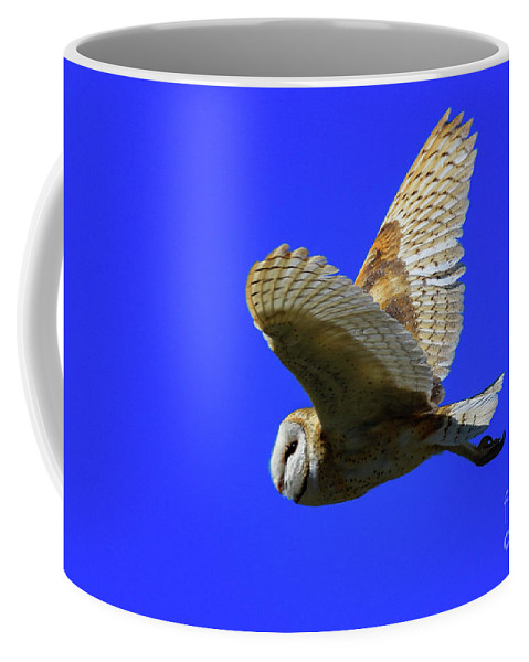 Tyto Alba Coffee Mug featuring the photograph Beautiful Flight by Craig Corwin