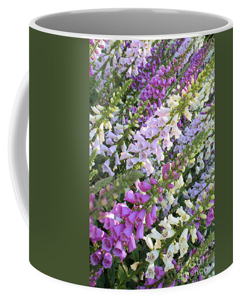Foxglove Coffee Mug featuring the photograph Beautiful Foxglove by Carol Groenen