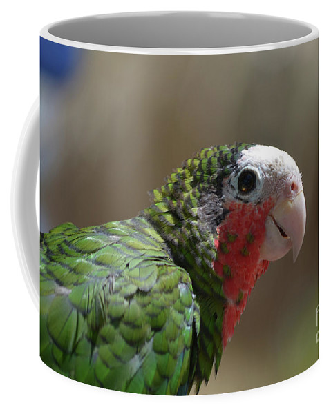 Conure Coffee Mug featuring the photograph Beautiful Look At At The Profile Of A Conure Parrot by DejaVu Designs