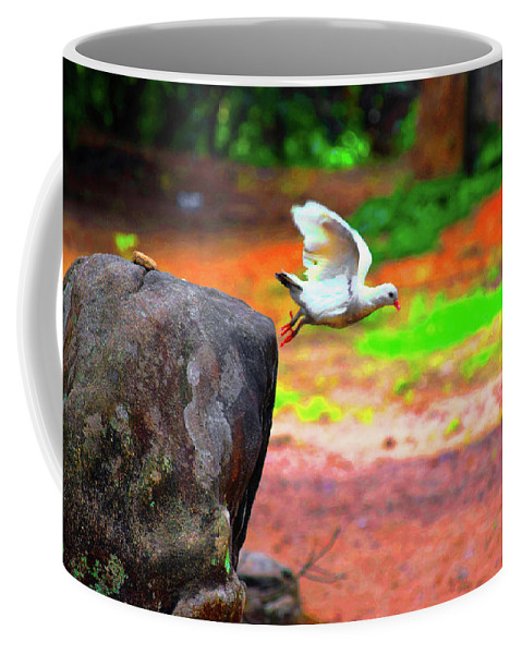 Beautiful Moment With A Bird Take Off Coffee Mug featuring the photograph Beautiful Moment With A Bird Take Off , Wall Frame, Art by Akin Samuel