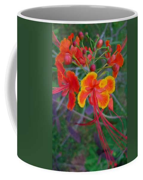 Beautiful Peacock Flower Coffee Mug featuring the painting Beautiful Peacock Flower 5 by Jeelan Clark