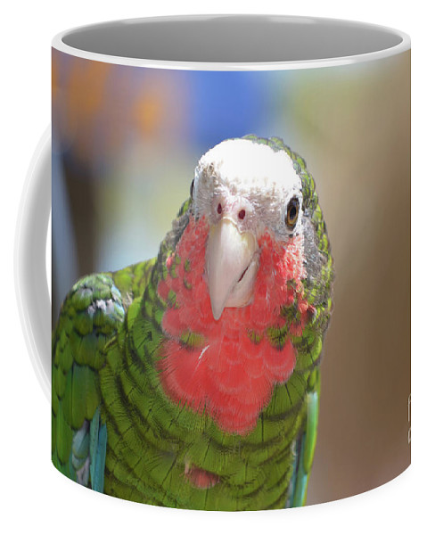 Conure Coffee Mug featuring the photograph Beautiful Red Feathers On The Throat Of A Green Conure Bird by DejaVu Designs